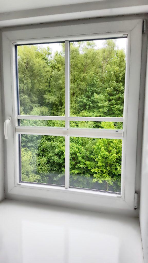 Nachher Fensterreiniger in Hamburg